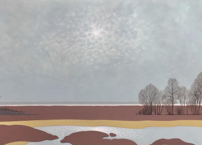 Nederlands landschap schilderij: Dwingelderveld (10)
