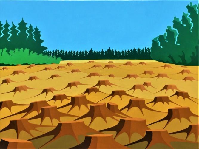 Nederlands landschap schilderij: Dwingelderveld (11)