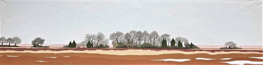 Nederlands landschap schilderij: Dwingelderveld 14 c
