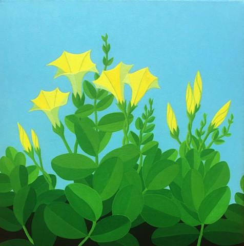 Bonaire schilderij: Kelki hel