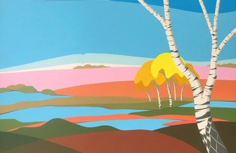 Nederlands landschap schilderij: Dwingelderveld (4)